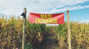 Get Lost In This Awesome 8-Acre Corn Maze In Ohio This Autumn