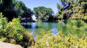 There's A Hidden Oasis Waiting For You At The End Of This Southern California Trail