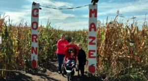 Get Lost In This Awesome 20-Acre Corn Maze In Iowa This Autumn