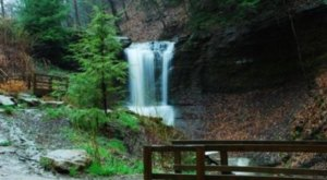 Your Kids Will Love This Easy 1-Mile Waterfall Hike Right Here In Pittsburgh