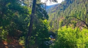 The Underrated River Trail In New Mexico You'll Want To Hike Over And Over Again