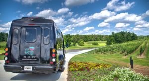 The Luxury Wine Shuttle Will Be Your New Favorite Guide For The Georgia Wine Region