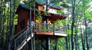 This Treehouse Resort In Vermont May Just Be Your New Favorite Destination