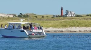 This Is The Island Boat Your You Can't Miss In Massachusetts This Summer