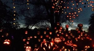 There's A Glowing Pumpkin Trail Coming To Rhode Island And It'll Make Your Fall Magical