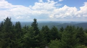 Take An Unforgettable Drive To The Top Of West Virginia's Highest Mountain