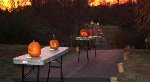 There's A Glowing Pumpkin Trail Coming To Cincinnati And It'll Make Your Fall Magical