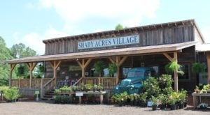 Spend An Entire Day Eating And Shopping At Shady Acres Village, A Charming Destination In Mississippi