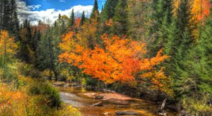 Fall Is Coming And These Are The 8 Best Places To See The Changing Leaves In New Hampshire