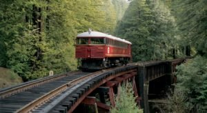 This 40-Mile Train Ride Is The Most Relaxing Way To Enjoy Northern California Scenery