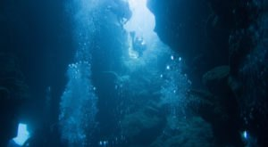 The Underwater Destination In Hawaii That Is Too Beautiful For Words