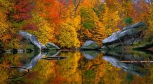You'll Be Happy To Hear That Cleveland's Fall Foliage Is Expected To Be Bright And Bold This Year