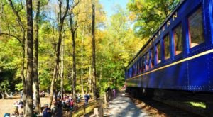 This 17-Mile Train Ride Is The Most Relaxing Way To Enjoy Delaware Scenery