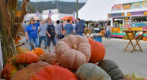 Make Your Autumn Awesome With A Visit To West Virginia's Little Known Pumpkin Park