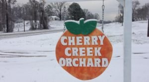 Most People Have No Idea This Charming Orchard Is Hiding In Mississippi