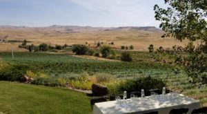 This Winery In Idaho With Views That Stretch For Miles Is Begging For A Visit