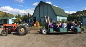 5 Welcoming Montana Farms To Visit For a Picture-Perfect Fall Day