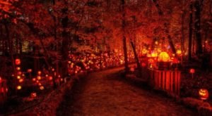 Minnesota's Glowing Pumpkin Trail Is A Great Way To Celebrate Fall