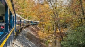 Don't Miss Out On This Spectacular Fall Foliage Train Ride In Georgia