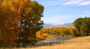 Fall Is Coming And These Are The 11 Best Places To See The Changing Leaves In Wyoming