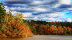 You'll Be Happy To Hear That Ohio's Fall Foliage Is Expected To Be Bright And Bold This Year
