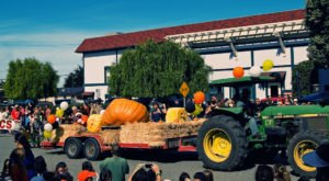 The Quirky Northern California Town That Transforms Into A Pumpkin Wonderland Every Fall