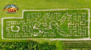 Get Lost In These 8 Awesome Corn Mazes Around Cleveland This Fall