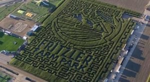 Get Lost In This Awesome 15-Acre Corn Maze In Colorado This Autumn