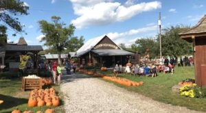 The Nebraska Farm That Transforms Into A Halloween Wonderland Each Year