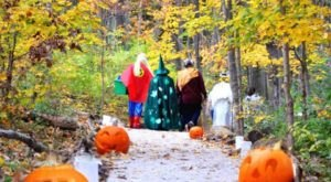 The Enchanting Halloween Hike In Cincinnati Your Whole Family Will Love