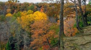 The Awesome Hike That Will Take You To The Most Spectacular Fall Foliage In Ohio