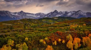 The Best Times And Places To View Fall Foliage In Colorado