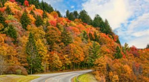 Fall Is Coming And These Are The 11 Best Places To See The Changing Leaves In Tennessee