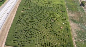 Get Lost In This Awesome 18-Acre Corn Maze In Idaho This Autumn