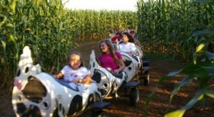Get Lost In This Awesome 8-Acre Corn Maze In Mississippi This Autumn