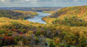 You'll Be Happy To Hear That Pennsylvania's Fall Foliage Is Expected To Be Bright And Bold This Year