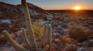 Here Are The 9 Happiest Cities In Arizona
