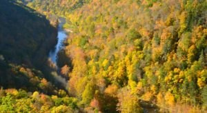 The Awesome Hike That Will Take You To The Most Spectacular Fall Foliage In Pennsylvania