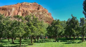 Stroll Through The Apple Orchards At This Majestic National Park In Utah