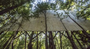 Time Stands Still At This Abandoned Arkansas Amusement Park