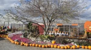 The Enchanting Farm Restaurant You Must Visit In Indiana This Fall