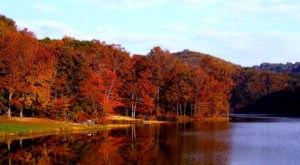 You'll Be Happy To Hear That Indiana'a Fall Foliage Is Expected To Be Bright And Bold This Year