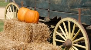 Take This Horse-Drawn Hayride Near Cleveland For A Picture Perfect Fall Day