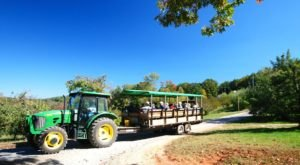 Nothing Says Fall Is Here More Than A Visit To North Carolina's Charming Apple Orchard