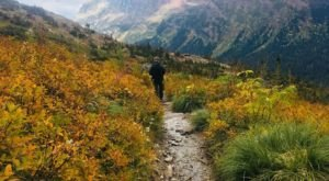 If You Can Only Hike 1 Montana Trail This Fall, You'll Want To Make It This One