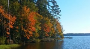 Fall Is Coming And These Are The 6 Best Places To See The Changing Leaves In Louisiana