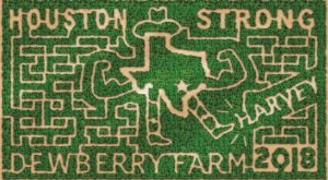 Get Lost In This Awesome 8-Acre Corn Maze In Texas This Autumn