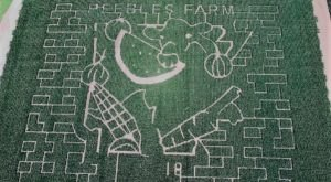 Get Lost In This Awesome 16-Acre Corn Maze In Arkansas This Autumn