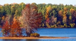 Fall Is Coming And These Are The 8 Best Places To See The Changing Leaves In Maryland