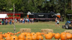 These 6 Fall-Themed Train Rides In Texas Will Have You Feeling Festive